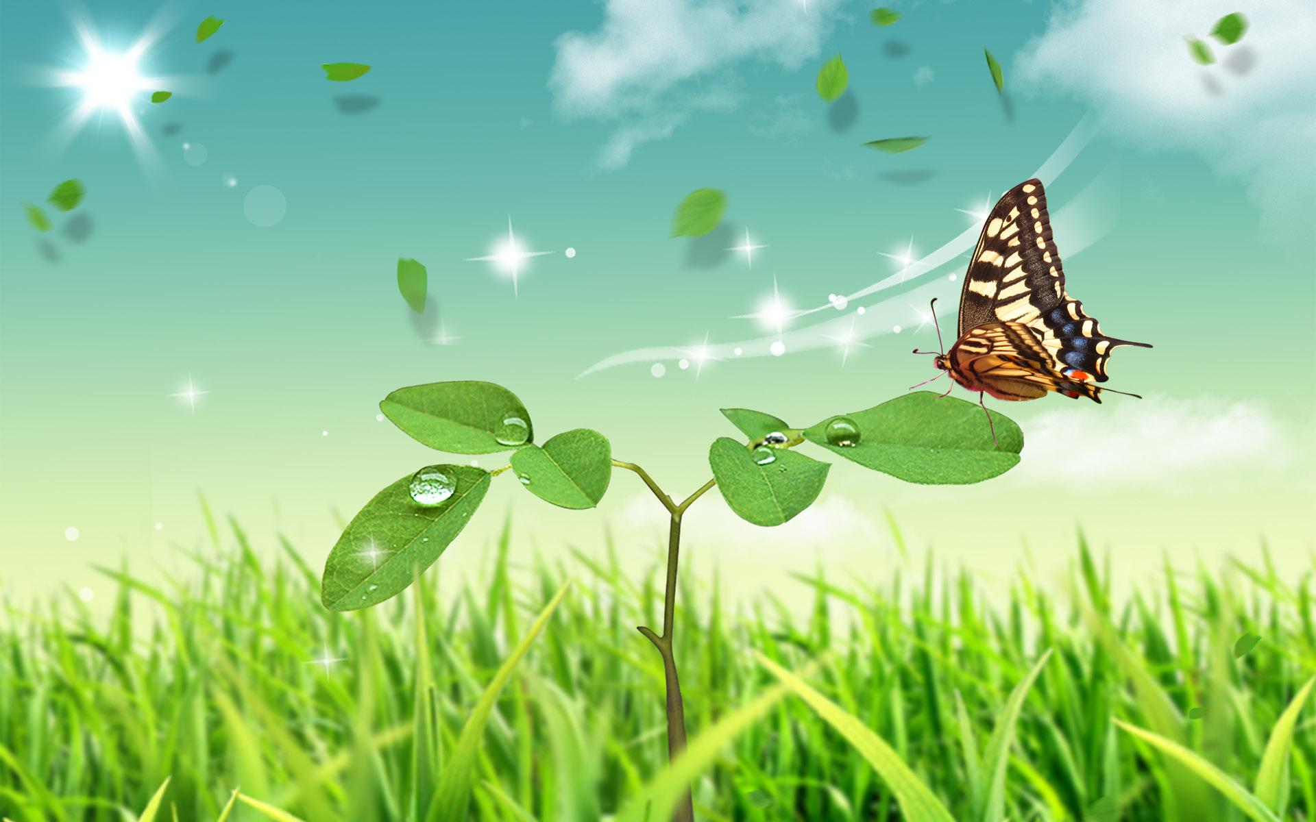 Abstract Nature Butterfly Hd Wallpaper Download Wallpapers Page
