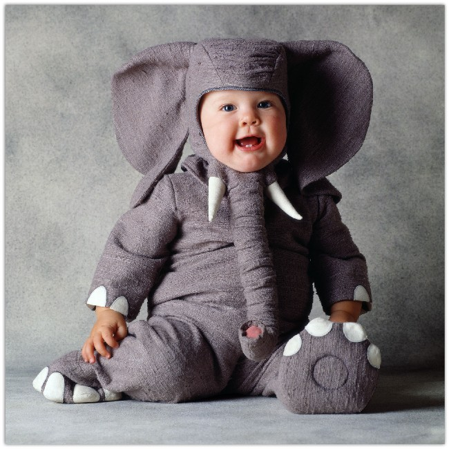 Cute Baby Wearing Elephant Costume Wallpaper Download Cool Hd