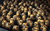 2013 Despicable Me 2 Hd Wallpaper wallpaper
