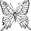 Butterfly Coloring Pages Wa wallpaper