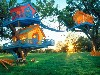 Cool Kids Tree House Design Wallpaper wallpaper