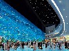 Dubai Mall Aquarium wallpaper