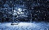Snow Nigth Winter Season Wallpaper wallpaper